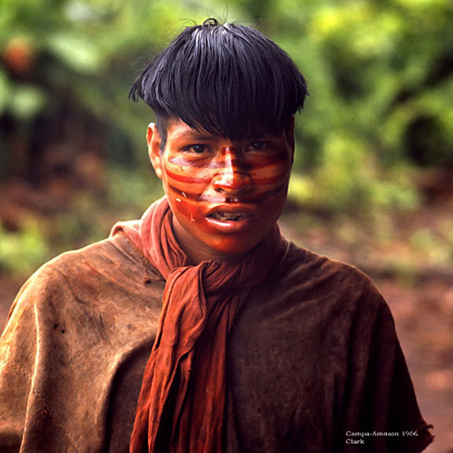 Campa Indian Man in the Amazon Rainforest - 1966