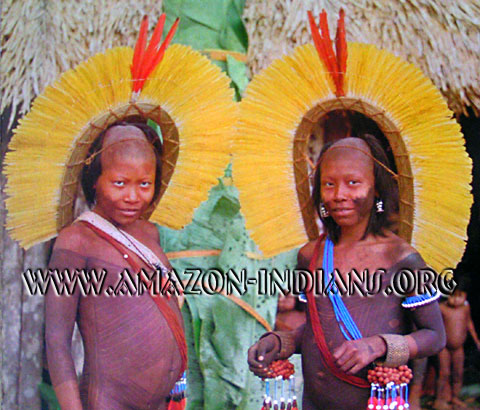 In This Essay I Would Like To Break From Tradition And Focus On The Traits That Various Tribes Xingu