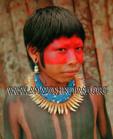 Kayapo Native