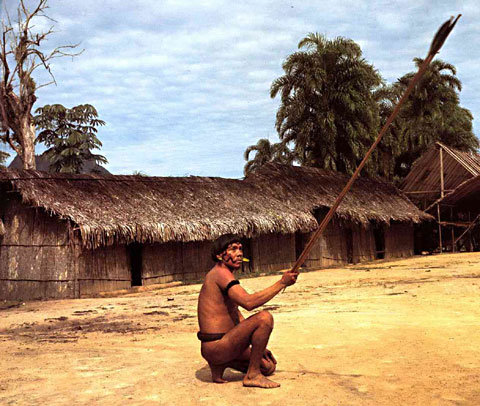 Yanomami Bow and Arrows