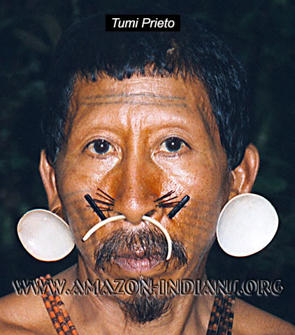 http://www.amazon-indians.org/matis-native-jaguar-people.jpg