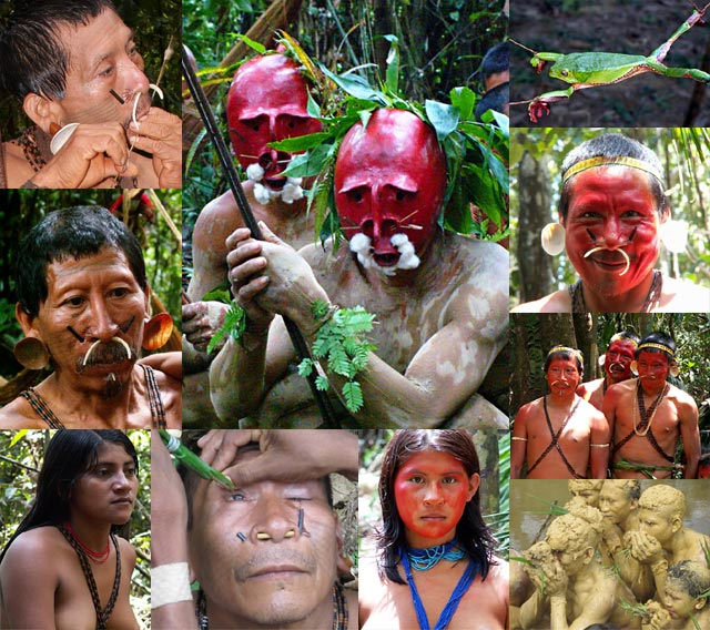 tribes Amazon indian