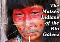 Amazon Indian Tribe - Matses