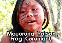 Mayoruna Poison Frog Ceremony