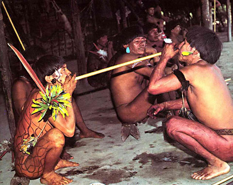 yanomami tribe marriage